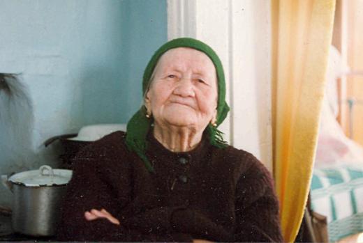 Новый словарь помогает описать уклад жизни сибирской крестьянки