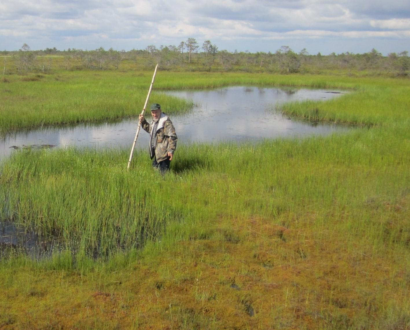 Васюганское болото Александр Березин.jpg