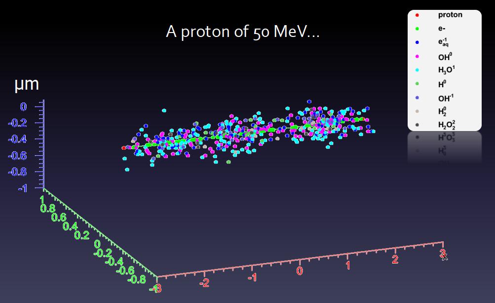 Распространения электронов и свободных радикалов в результате прохождения 50 МэВ протона в воде.png