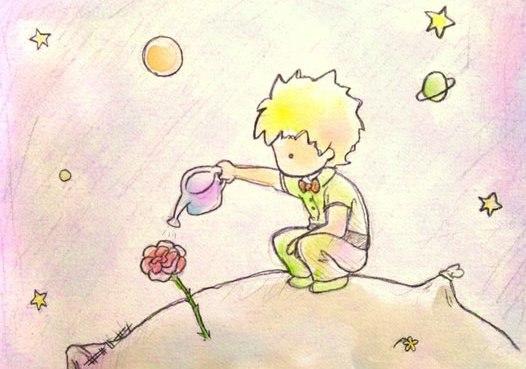 фото маленького принца
